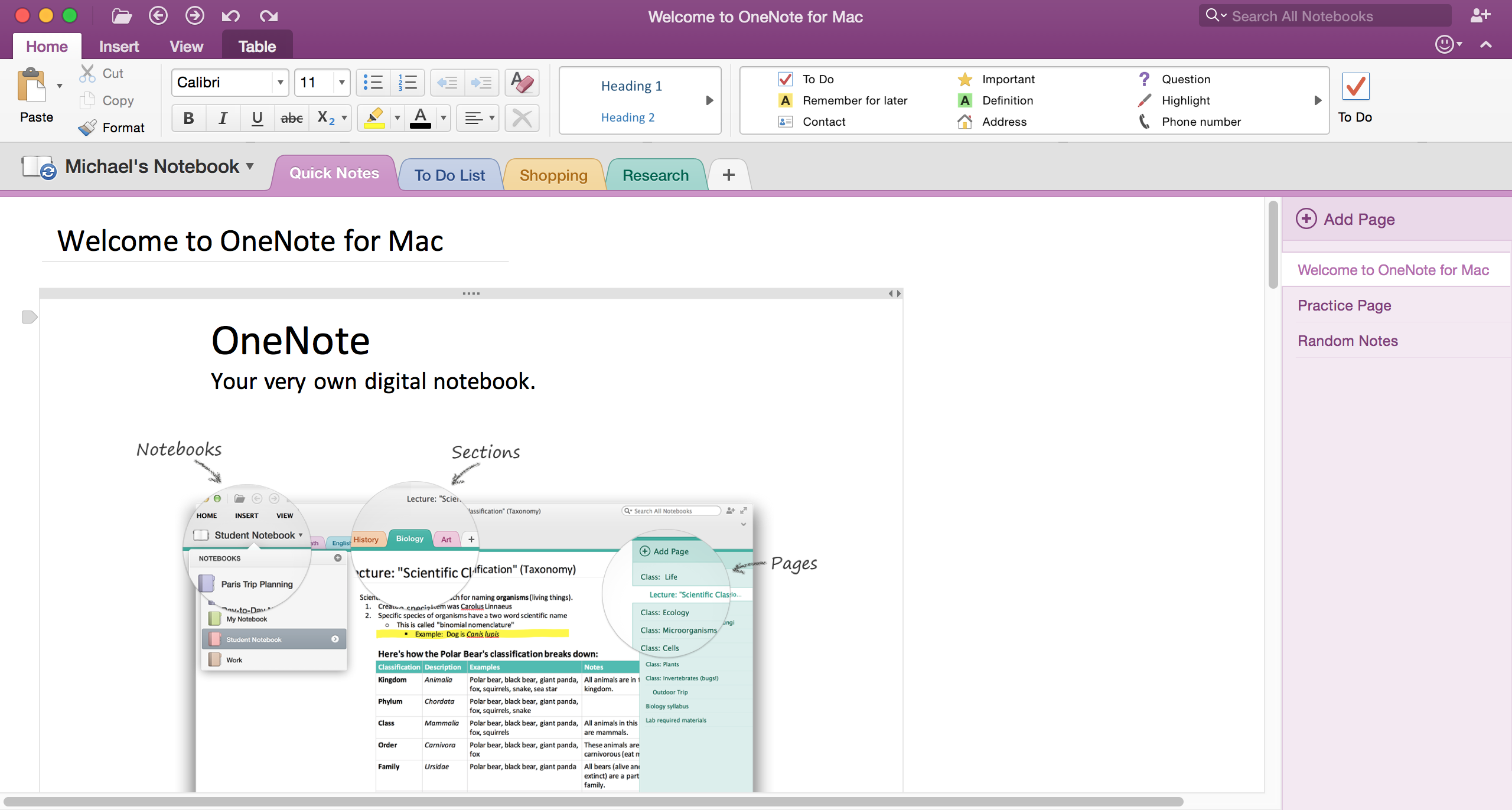 how to use onenote to make and share shopping lists bettercloud